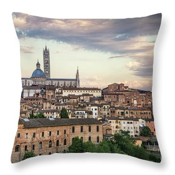 Evening Adagio Throw Pillow