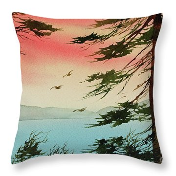 Throw Pillow featuring the painting Evening Light by James Williamson