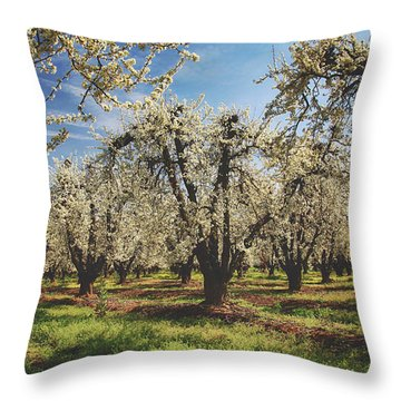 Throw Pillow featuring the photograph Everything Is New Again by Laurie Search