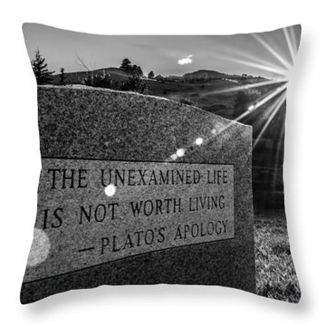 Examined Life Throw Pillow