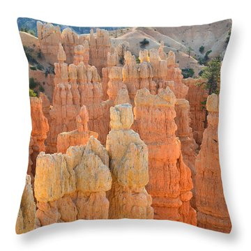 Throw Pillow featuring the photograph Fairyland Canyon by Ray Mathis