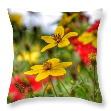 Throw Pillow featuring the photograph Faith by Isabella F Abbie Shores FRSA