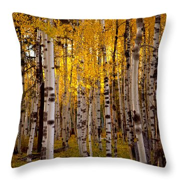 Fall At Snowbowl Throw Pillow