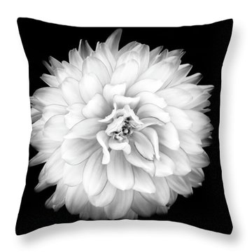 Throw Pillow featuring the photograph Fall Dahlia by Louise Lindsay