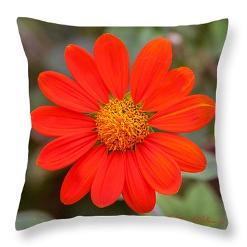 Fall Flower Throw Pillow by Edward Peterson