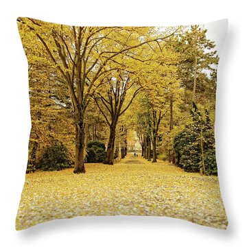 Throw Pillow featuring the photograph Carpet Of Golden Leaves by Ivy Ho
