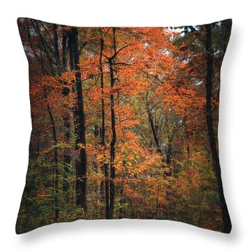 Fall In Arkansas Throw Pillow