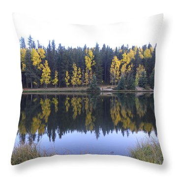 Potty Pond Reflection - Fall Colors Divide Co Throw Pillow