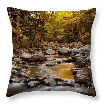 Fall On The Gale River Throw Pillow
