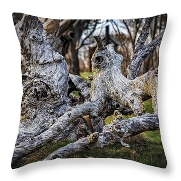 Fallen From Grace Throw Pillow