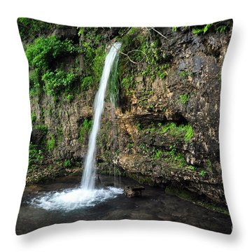 Falling Spring 3 Throw Pillow by Marty Koch