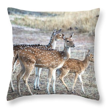 Family Outing Throw Pillow by Pravine Chester