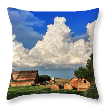 Farm Yard Throw Pillow