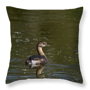 Feathered Friend Throw Pillow by Kathy Gibbons