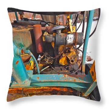 Feb 2016 33 Throw Pillow