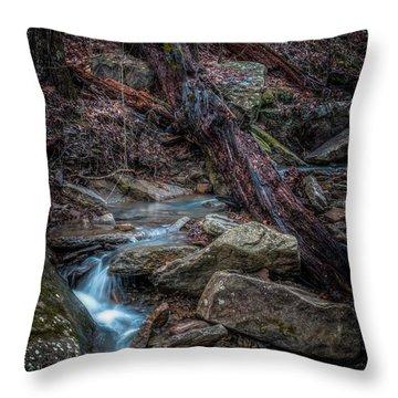 Feeder Creek Throw Pillow