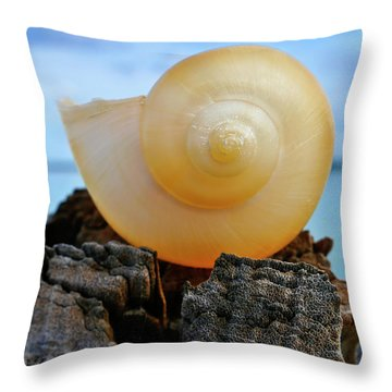 Throw Pillow featuring the photograph Fibonacci by Skip Hunt