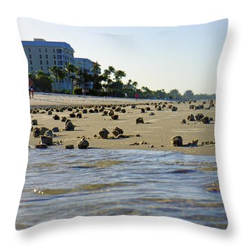 Fighting Conchs At Lowdermilk Park Beach In Naples, Fl Throw Pillow