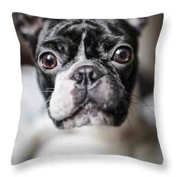 Fina Throw Pillow