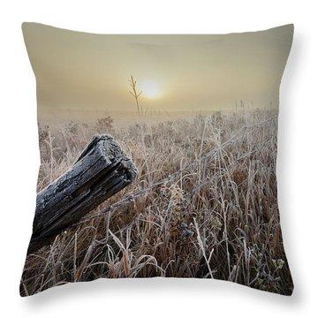 First Frost Throw Pillow