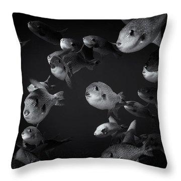 Fla-150811-nd800e-26096-bw-selenium Throw Pillow by Fernando Lopez Arbarello