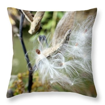 Flight Of The Milkweed Throw Pillow