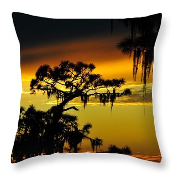 Central Florida Sunset Throw Pillow