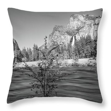 Flow Throw Pillow by Ryan Weddle