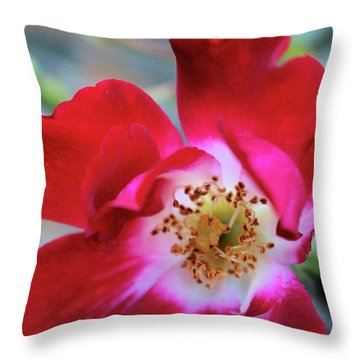 Flower Dance Throw Pillow