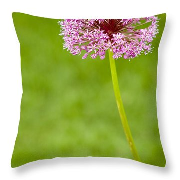 Flower Throw Pillow by Sebastian Musial