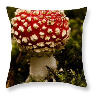 Throw Pillow featuring the photograph Fly Agaric Toadstool by David Isaacson