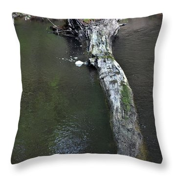 Throw Pillow featuring the photograph Footbridge by Skip Willits