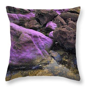 Foreign Shore Throw Pillow
