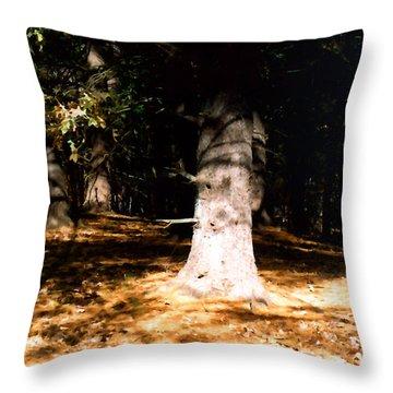 Forest Entrance Throw Pillow by Paul Sachtleben