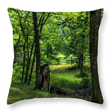 Throw Pillow featuring the photograph Forest Environment by Richard J Thompson