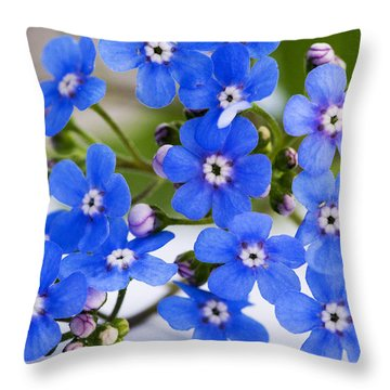 Throw Pillow featuring the photograph Forget-me-not by Chevy Fleet