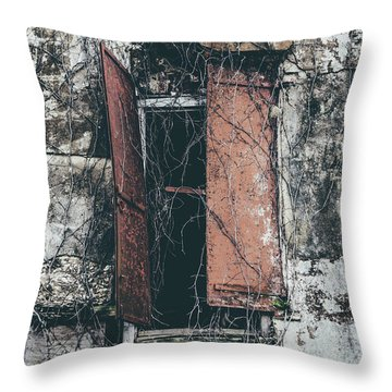 Throw Pillow featuring the photograph Forgotten Homestead by Kim Hojnacki