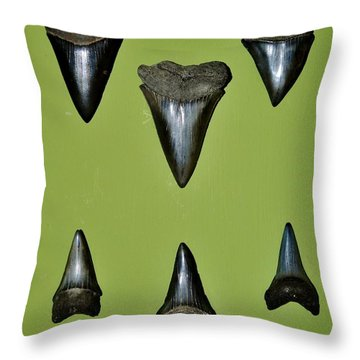 Fossil Mako Shark Teeth Throw Pillow