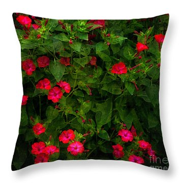 Throw Pillow featuring the photograph Four O'clock by Ann Jacobson