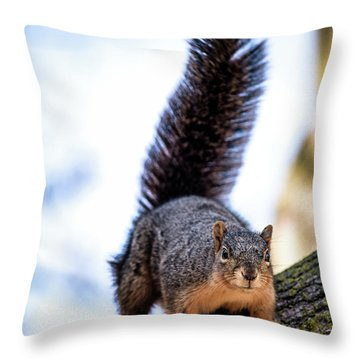 Throw Pillow featuring the photograph Fox Squirrel On Alert by Onyonet  Photo Studios
