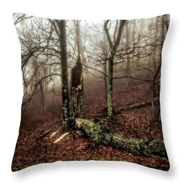 Fractured In Fog Throw Pillow