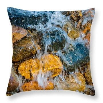 Throw Pillow featuring the photograph Fresh Water by Alexander Senin