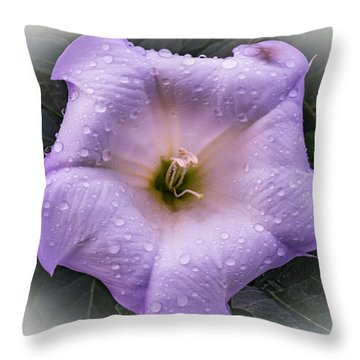 Freshly Showered Throw Pillow