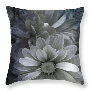 From The Palest Of Light Throw Pillow
