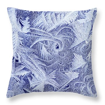 Frosty Window Throw Pillow