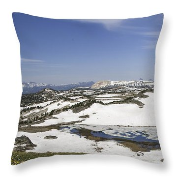 Frozen Lake  Beartooth Highway Throw Pillow