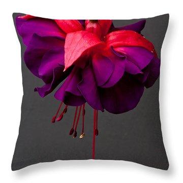 Fuchsia Throw Pillow by Dawn OConnor