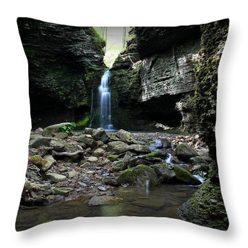 Fuzzy Butt Falls Throw Pillow