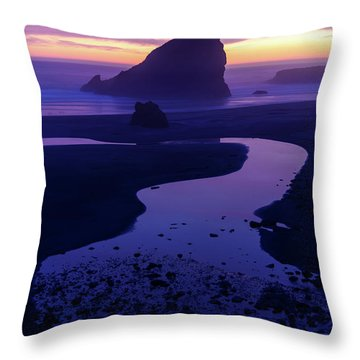 Throw Pillow featuring the photograph Gem by Chad Dutson