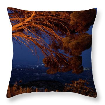 Gerace Throw Pillow
